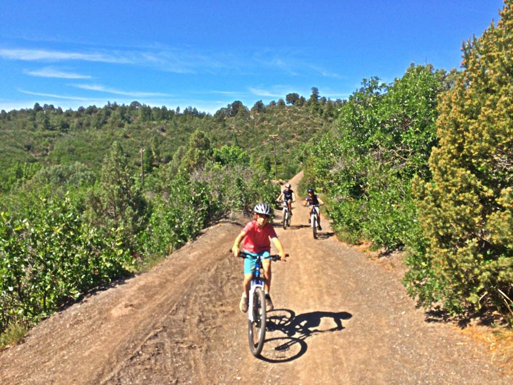 Crestview Trail