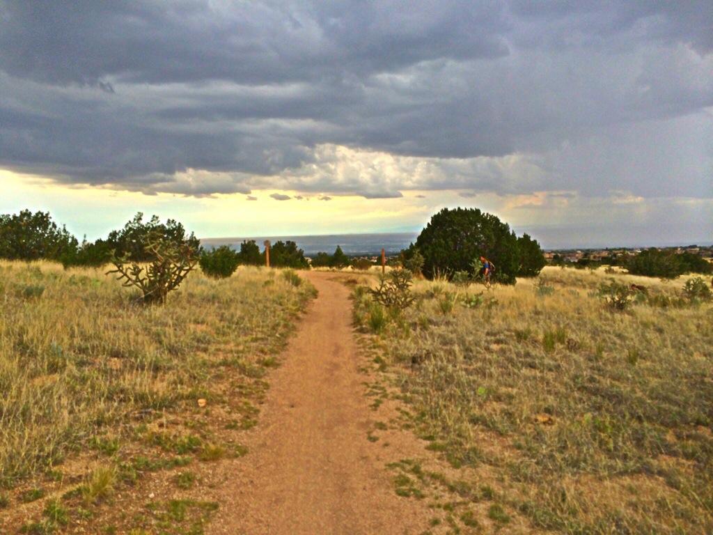 Trail 305