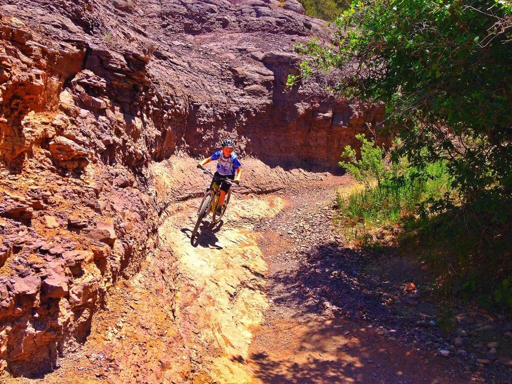 Rock Berm in Big Canyon