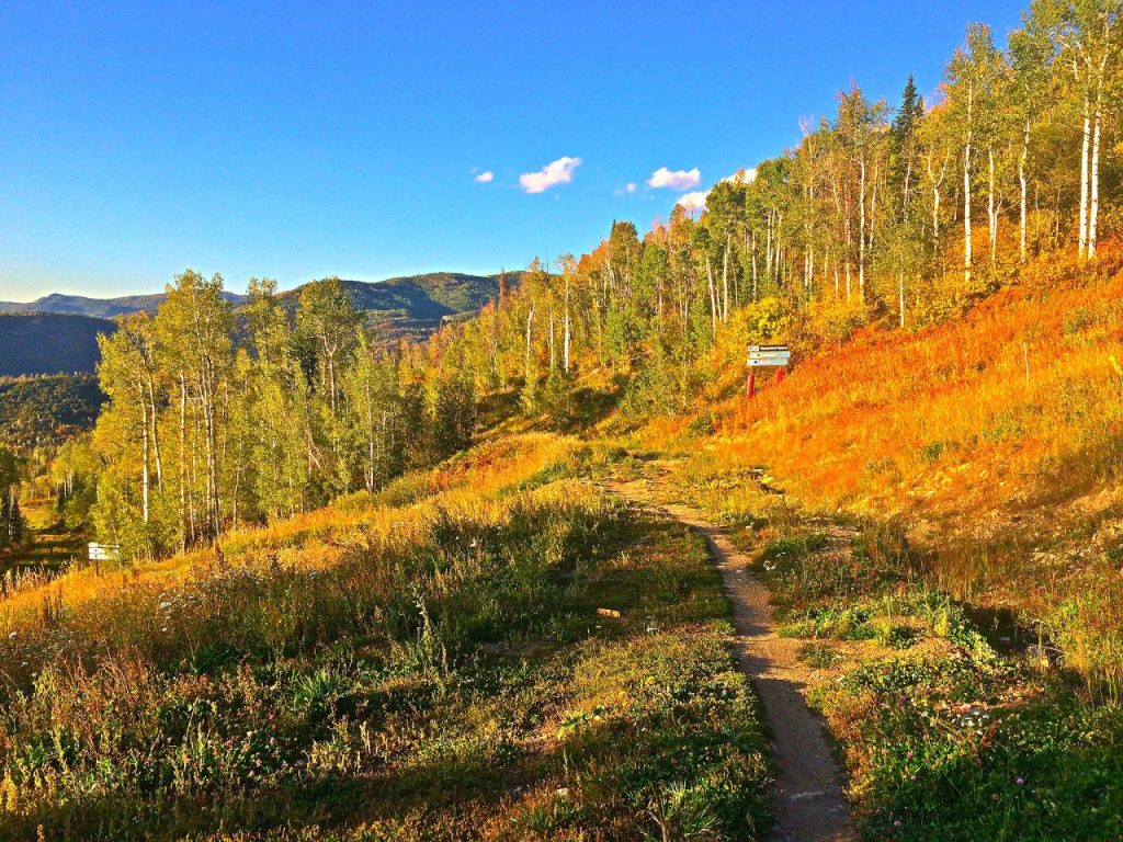 Fall Single Track in Steamboat