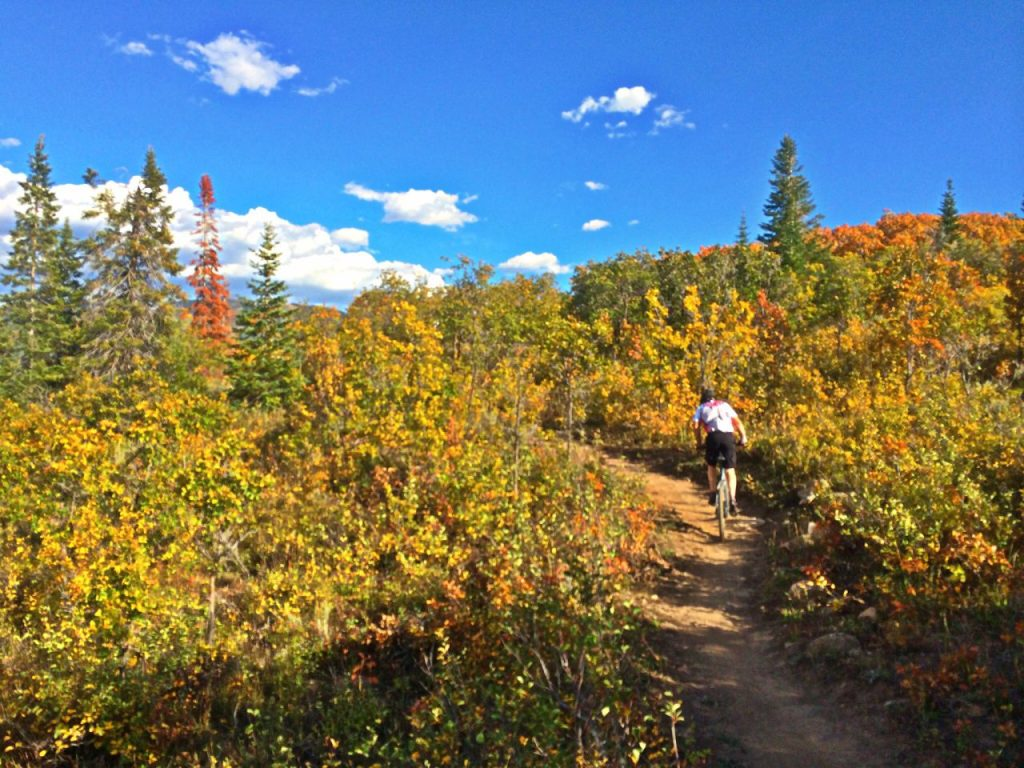 Grinding up Lupine Trail on Emerald Mountain