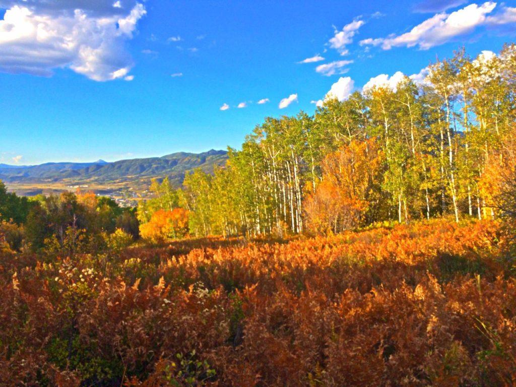 Fall in Colorado, a Rocky Mountain High